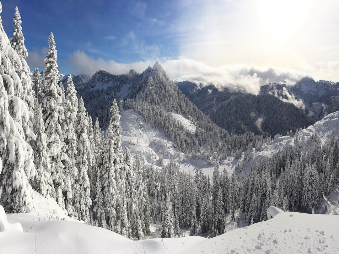 Snowy trees at the top of Stevens Pass Mountain Resort near Bothell, Washington.