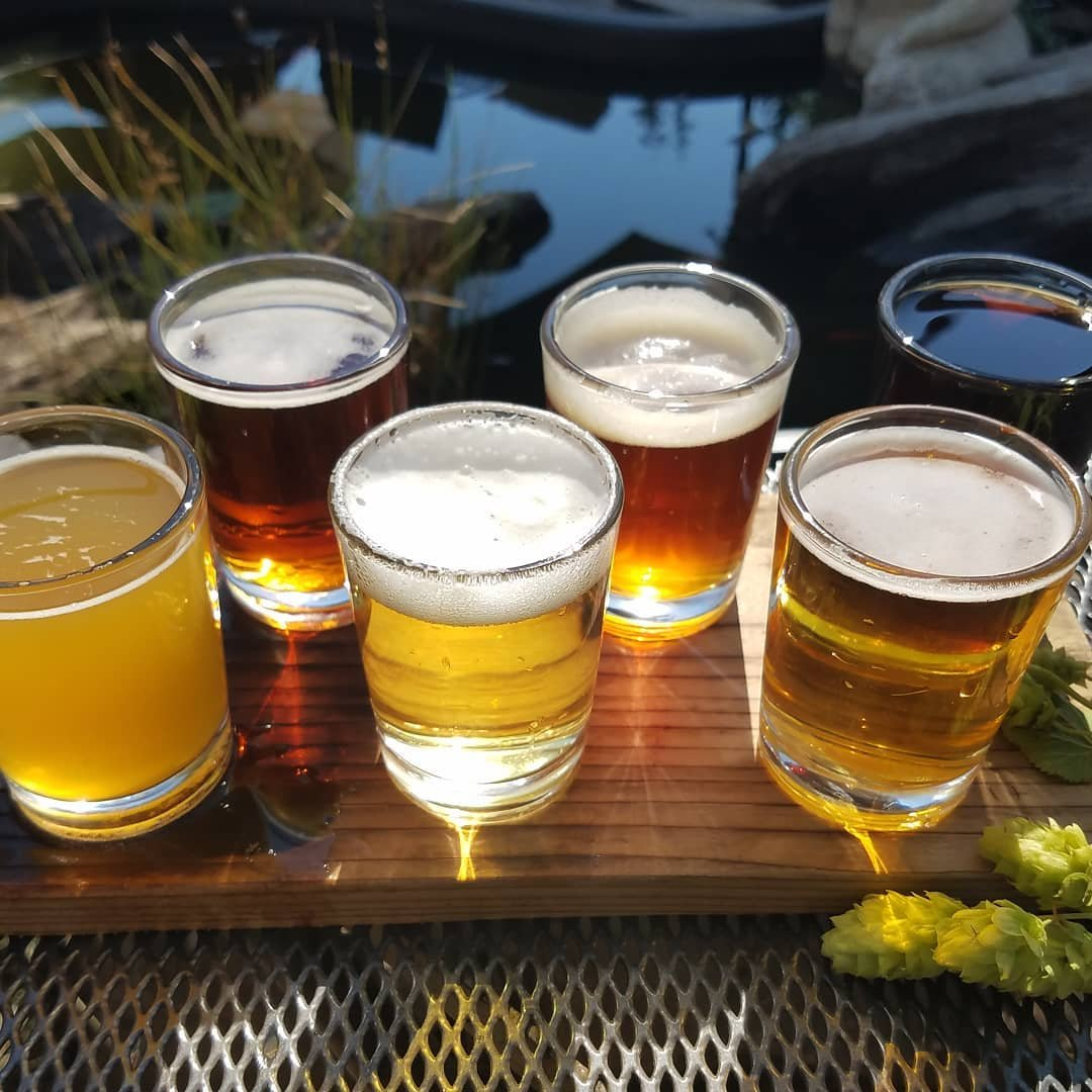 Tasting glasses of different beers from 192 Brewing near Bothell, Washington.