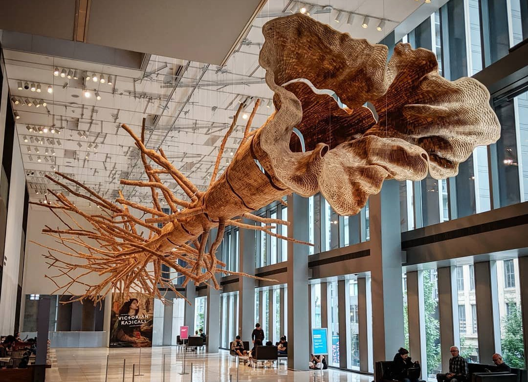 A tree sculpture hanging from the ceiling at the Seattle Art Museum near Bothell.