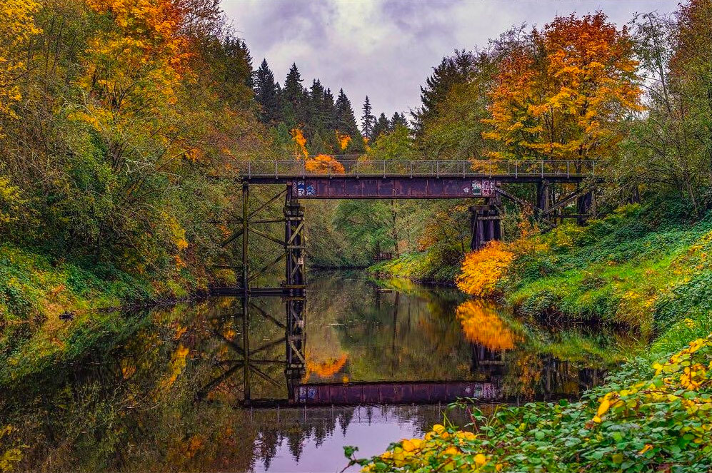bothell-play-blyth-park-bridge-over-river-fall-colors-on-trees